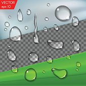 Realistic transparent water drops for placement on any background, glass or a leaf. Vector set isolated illustration