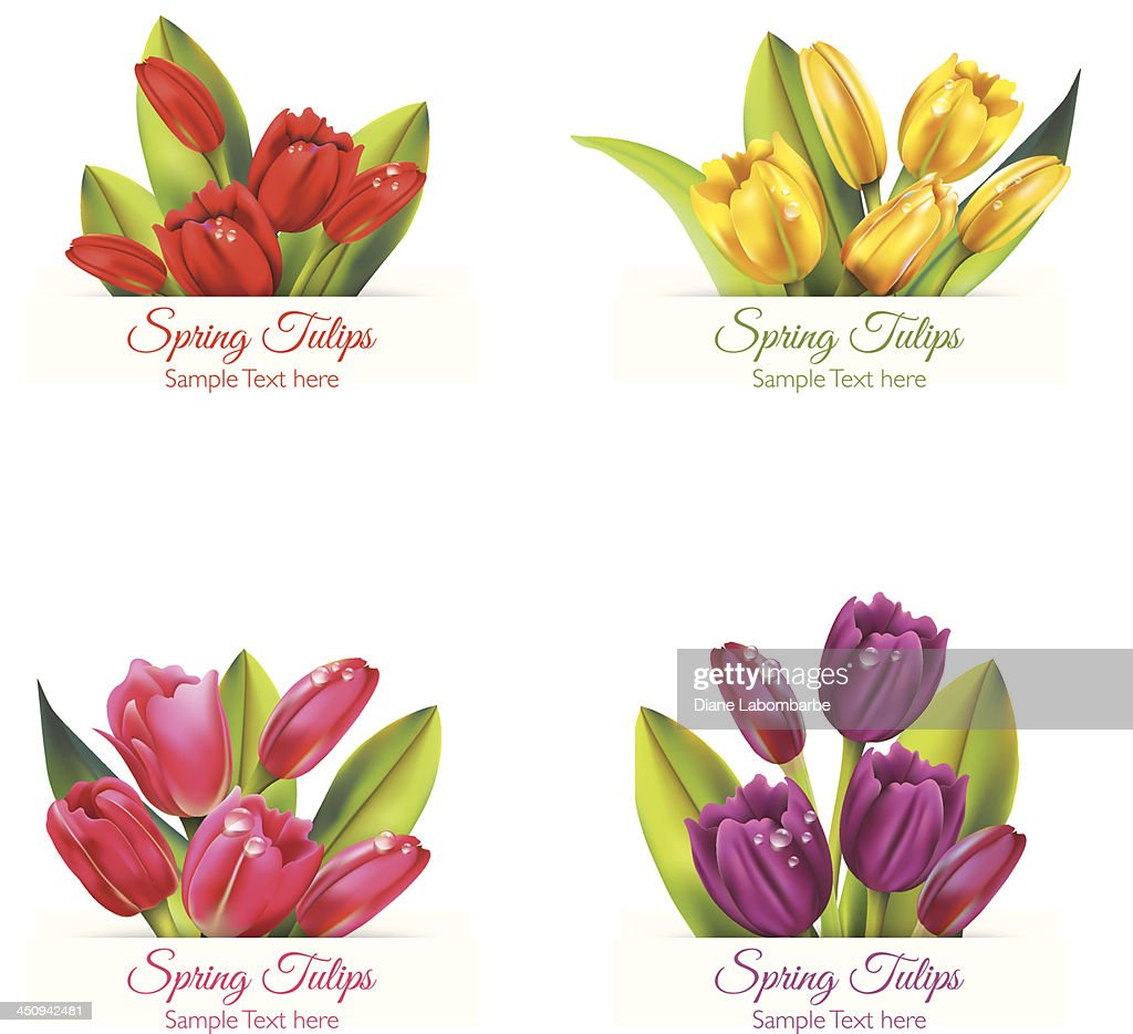 Realistic Tulip Banners