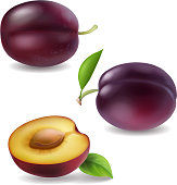 Realistic vector plum collection. Plums 3d icons isolated