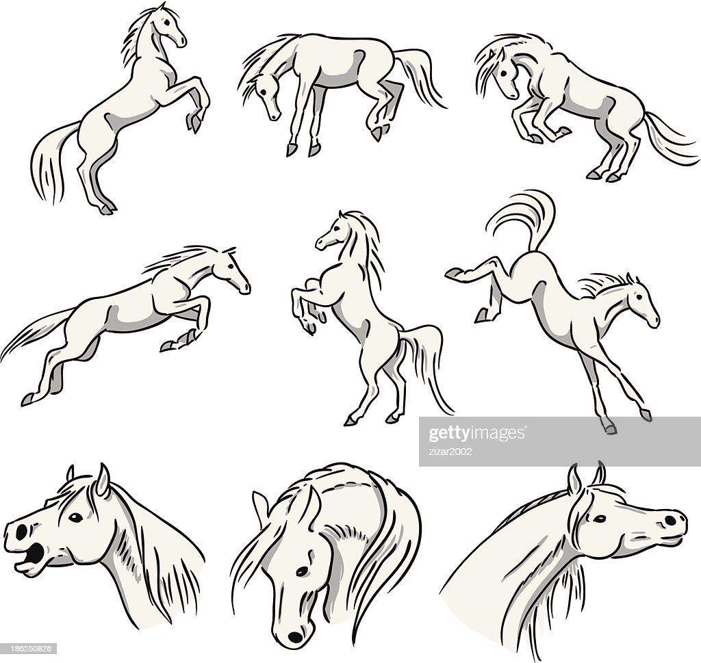 Rearing, bucking and jumping Arabian Horses