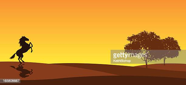 rearing horse in field - mustang wild horse stock illustrations, clip art, cartoons, & icons