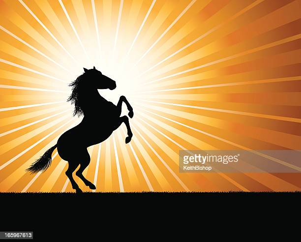 rearing stallion background - horse - mustang wild horse stock illustrations, clip art, cartoons, & icons