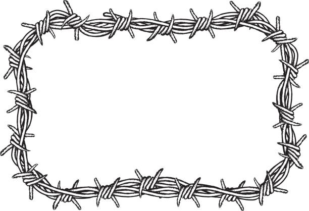 Free barbed wire fence border Images, Pictures, and Royalty-Free ...