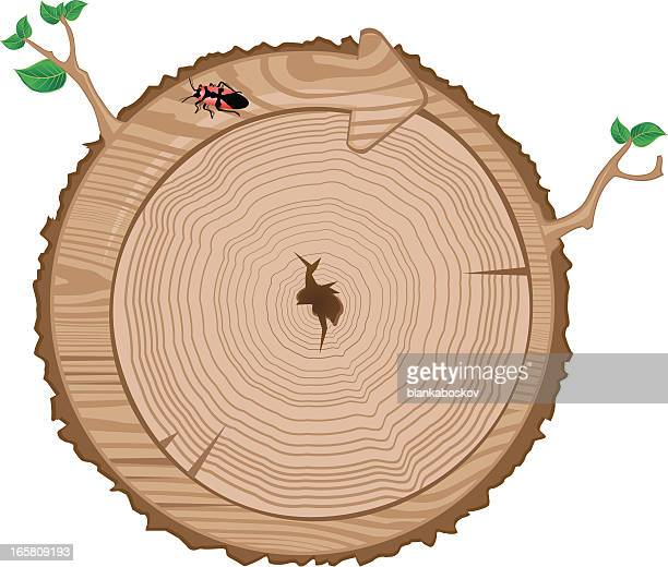 recycle tree trunk - tree rings stock illustrations, clip art, cartoons, & icons