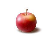Red apple, fresh fruit, Vector illustration isolated on white background