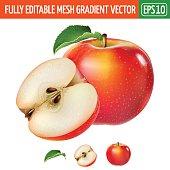 Red apple on white background. Vector illustration