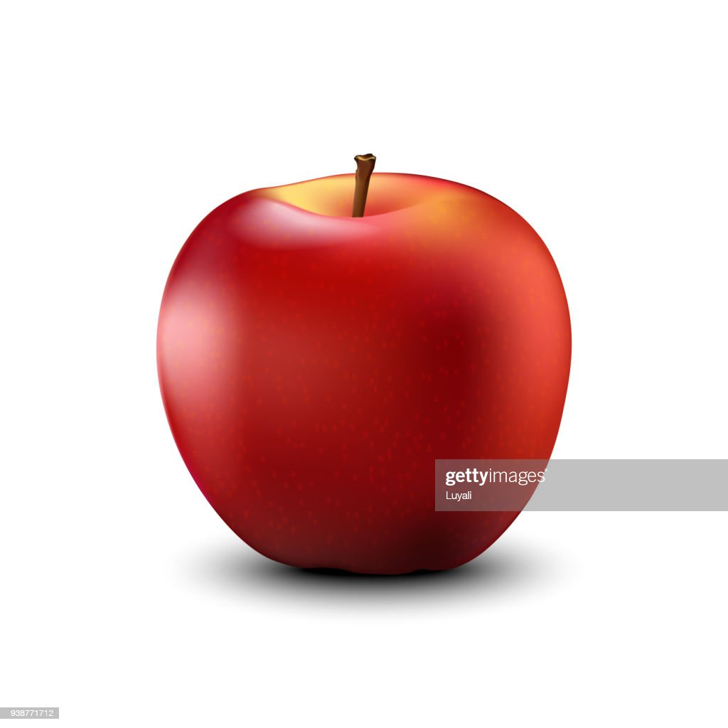 Red apple realistic detailed. Vector.