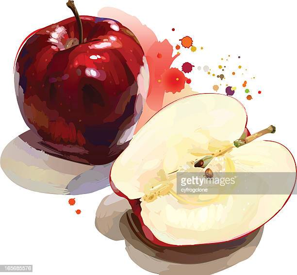 red apple - mixed media stock illustrations