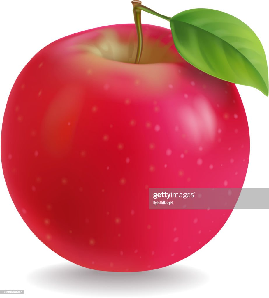 Red apple with leaf Realistic illustration