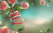 Red apples hang on the branches. The concept of harvesting and a healthy lifestyle