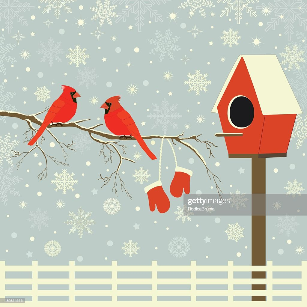 Red birds on branch