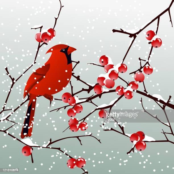 red cardinal with winter background - cardinal bird stock illustrations, clip art, cartoons, & icons