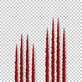 Red claws scratches - vector isolated on transparent background. Talons cuts animal cat, dog, tiger, lion, bear