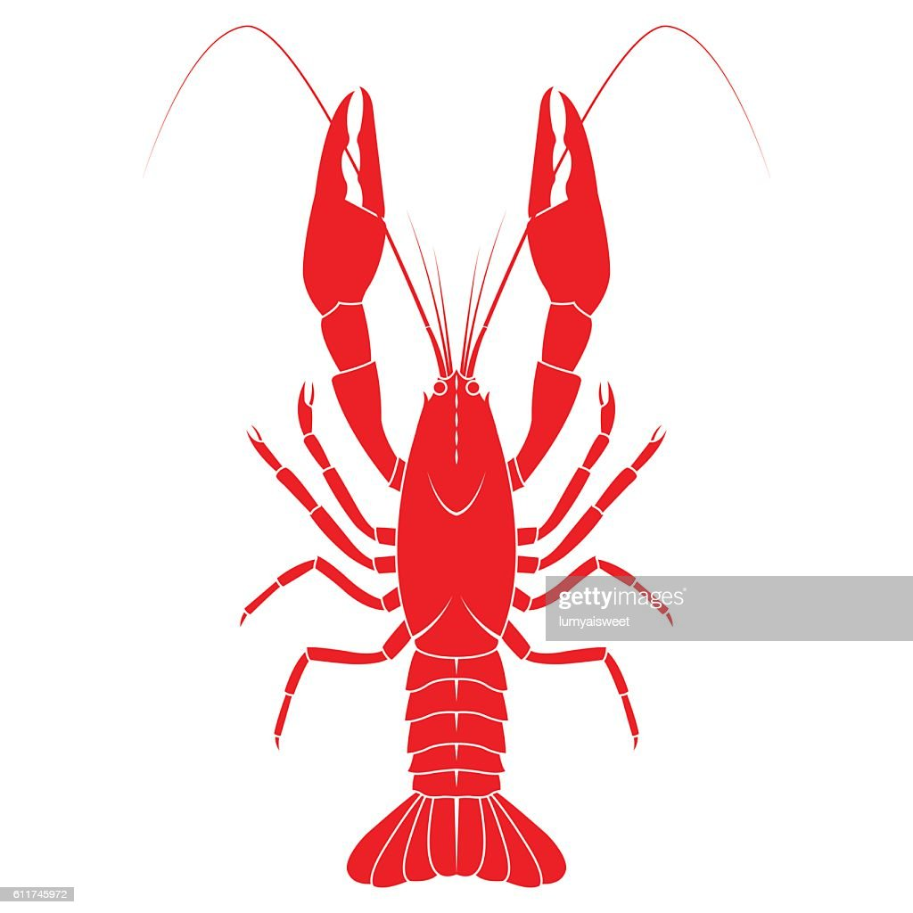 Red crayfish vector flat illustration isolated