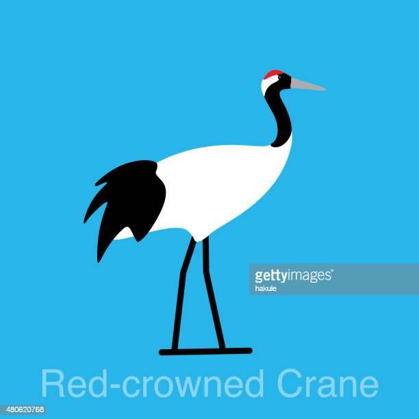 red crowned crane bird series - crane bird stock illustrations