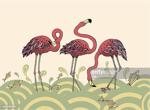 red flamingos - flamingo stock illustrations, clip art, cartoons, & icons