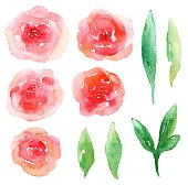 Red flowers vector clip art