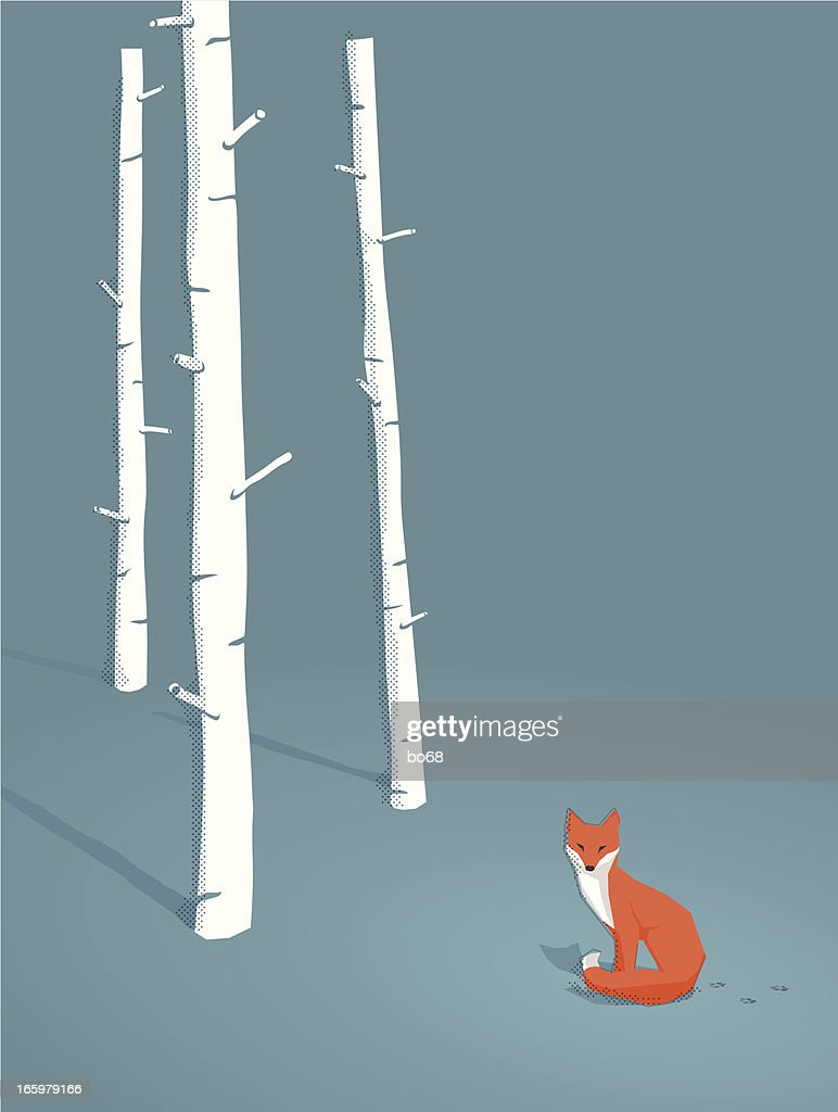 red fox in a forest