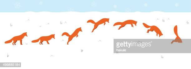 red fox jumping and hunting on the snow - fox stock illustrations, clip art, cartoons, & icons