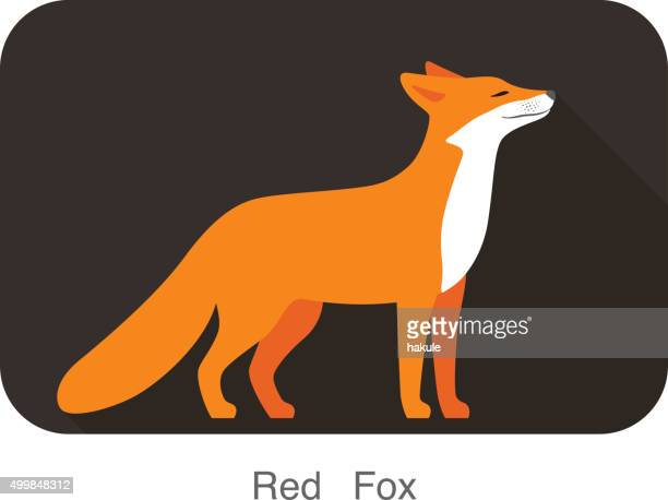 red fox walking, smell the air - fox stock illustrations, clip art, cartoons, & icons