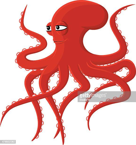 Red octopus / Pieuvre rouge