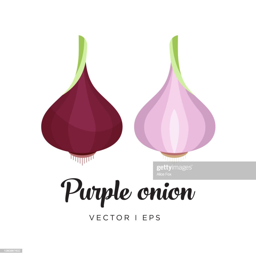 Red onion vector editable illustration. Half of red onion, simple flat style.