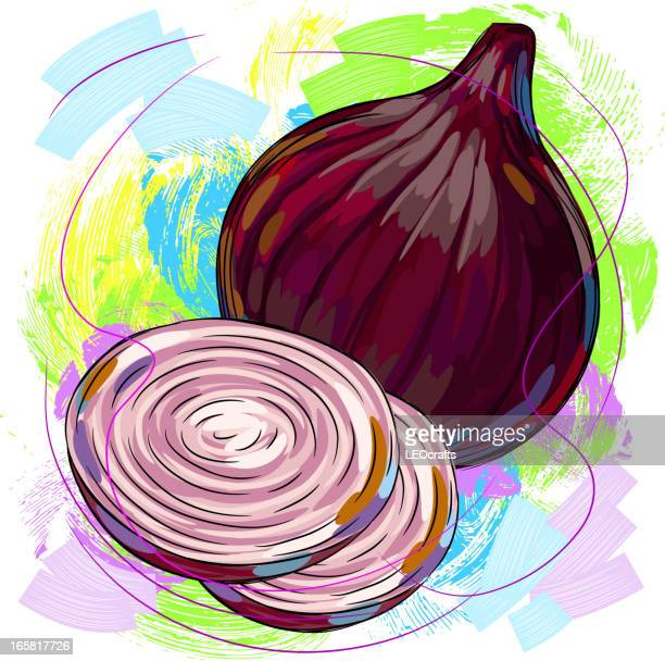 red onion - serving size stock illustrations, clip art, cartoons, & icons