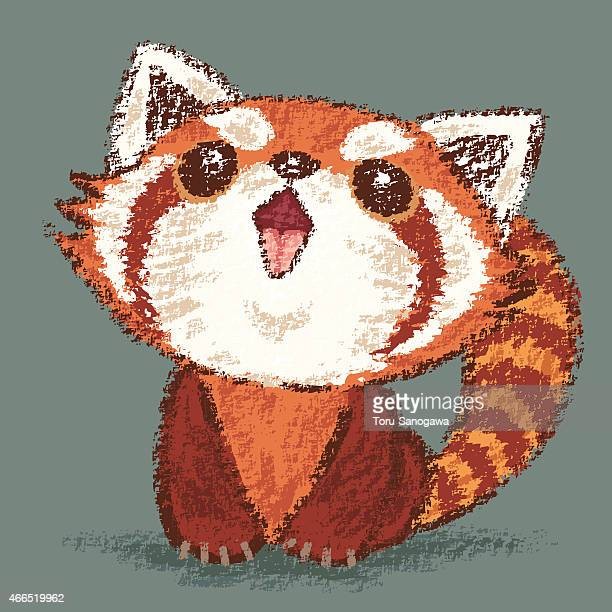 Illustrations Et Dessins Animes De Panda Roux Getty Images