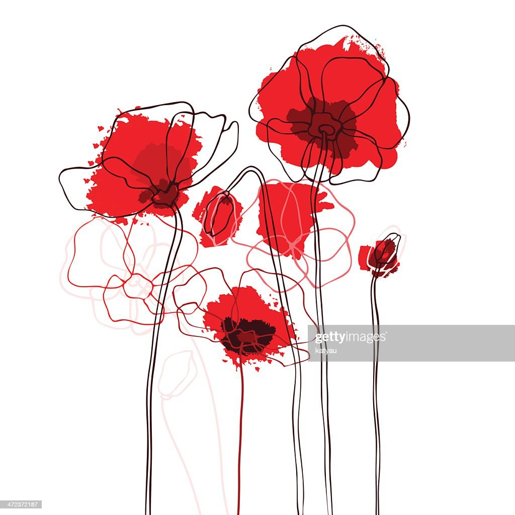 Red poppies on a white background