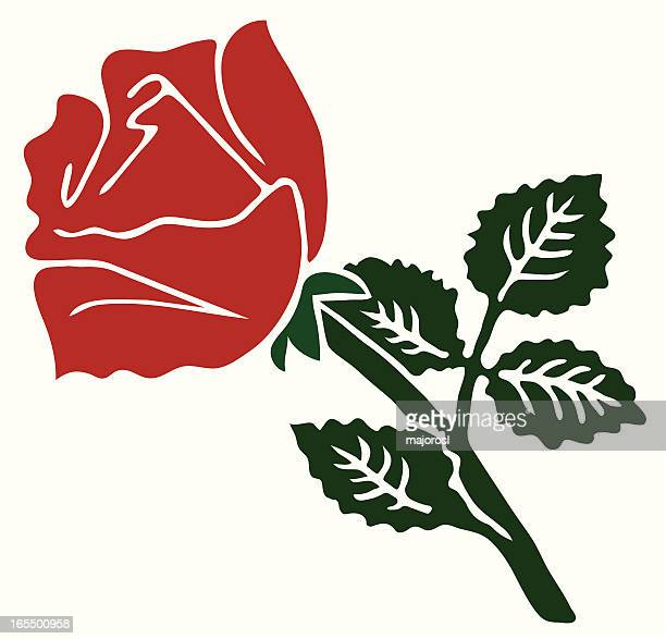 red rose - rose petals stock illustrations, clip art, cartoons, & icons
