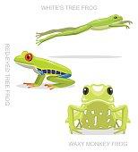 Red-Eyed Tree Frog Set Cartoon Vector Illustration