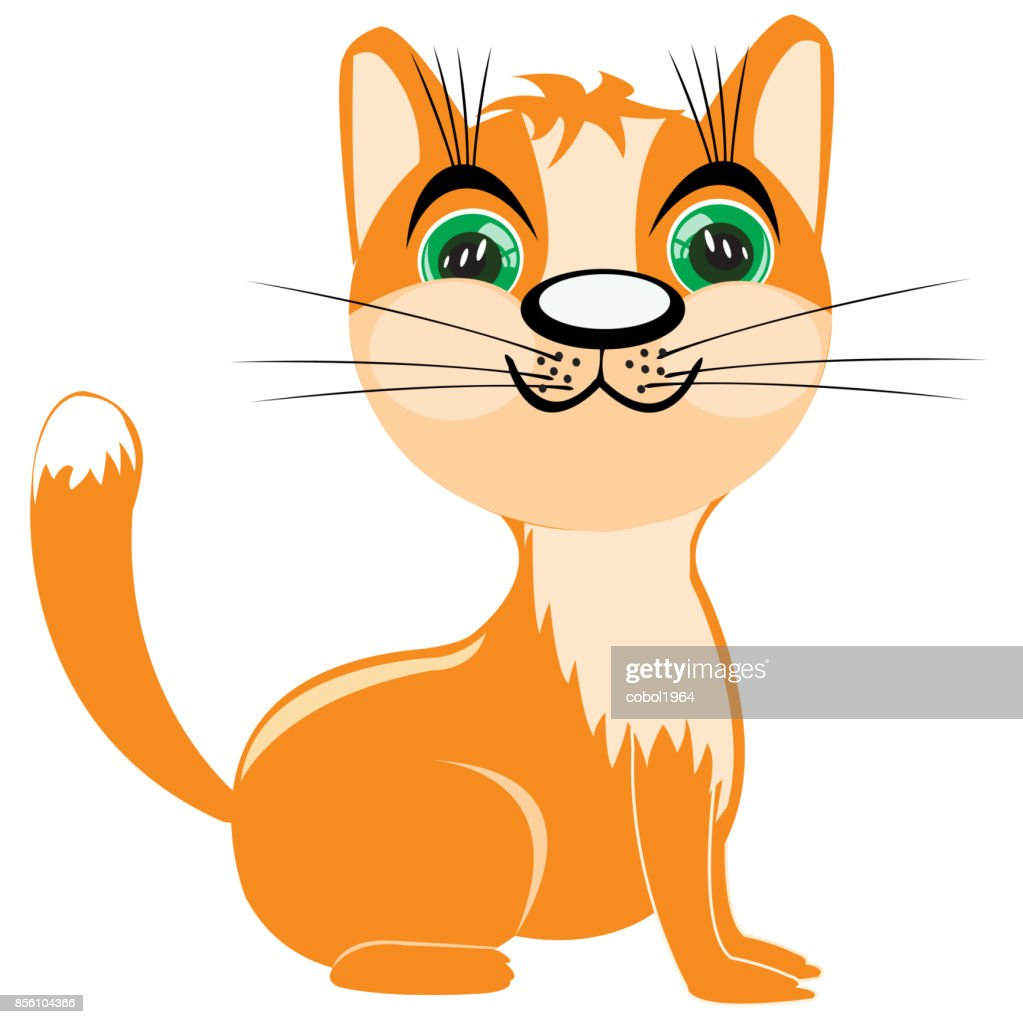 Redhead kitten
