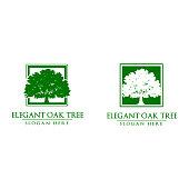 reen Oak Tree Vector Design