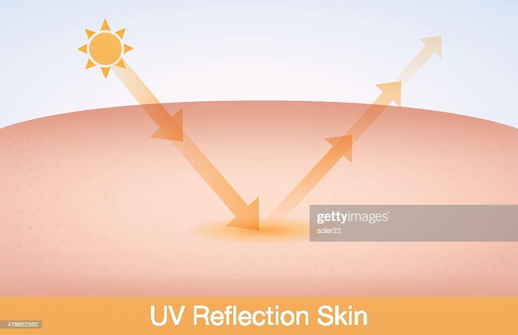 UV reflection skin