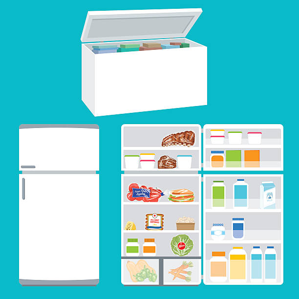 refrigerator and freezer filled with foods - frozen food stock illustrations