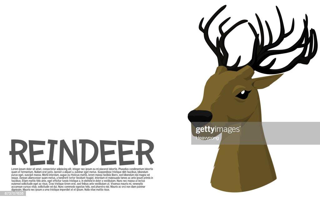 Reindeer Iso view