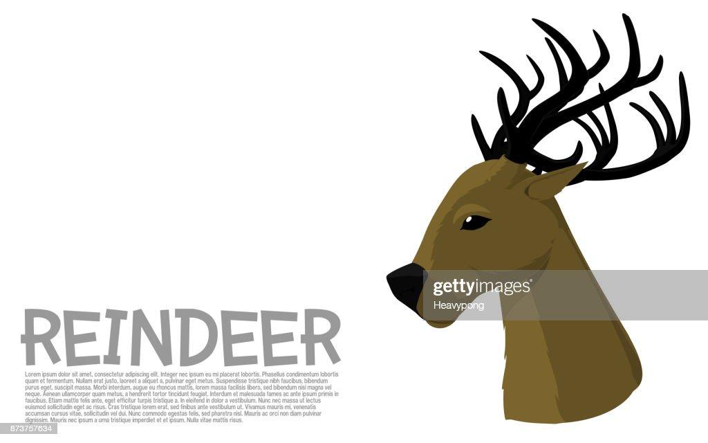 Reindeer side view