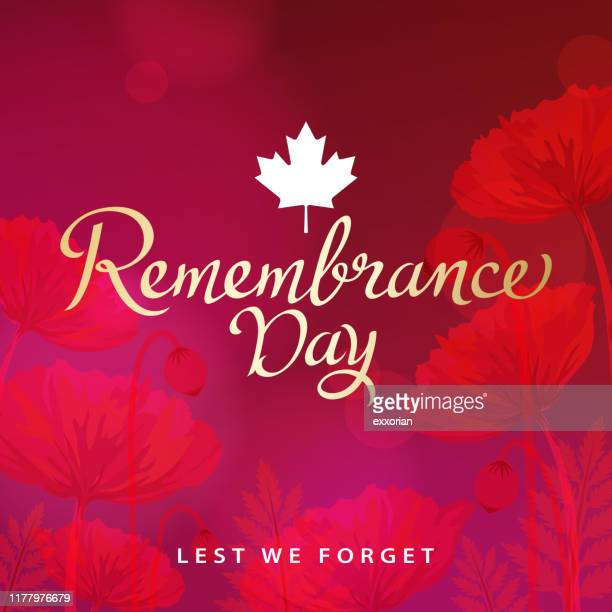 remembrance day canada - anzac soldier stock illustrations