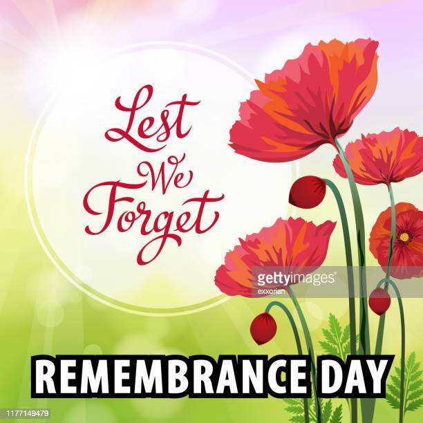 remembrance day poppy flowers - anzac soldier stock illustrations