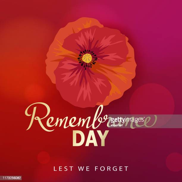 remembrance day red poppy - armistice stock illustrations