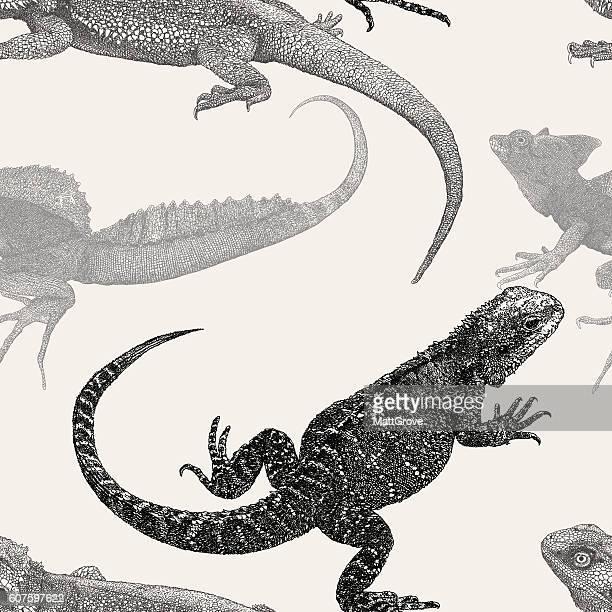 ilustrações, clipart, desenhos animados e ícones de réptil rpt - réptil