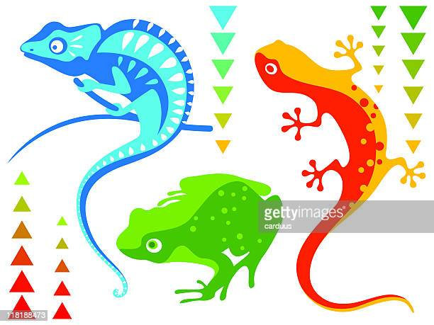 reptiles and amphibian - chameleon stock illustrations, clip art, cartoons, & icons