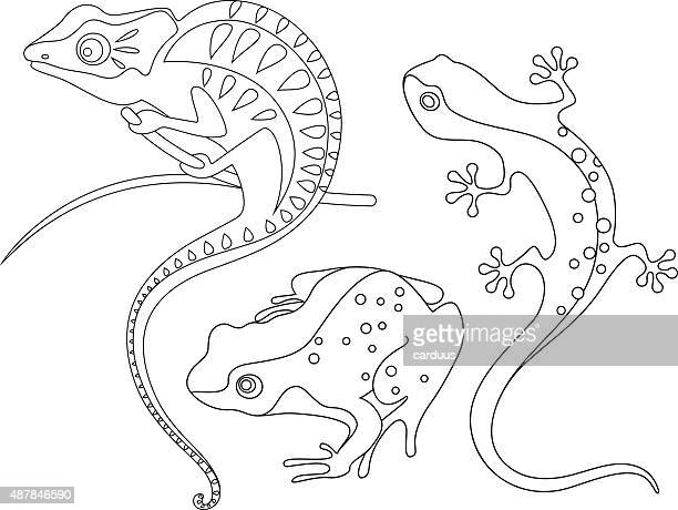 reptiles - chameleon stock illustrations, clip art, cartoons, & icons