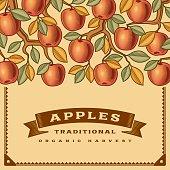 Retro apple harvest card