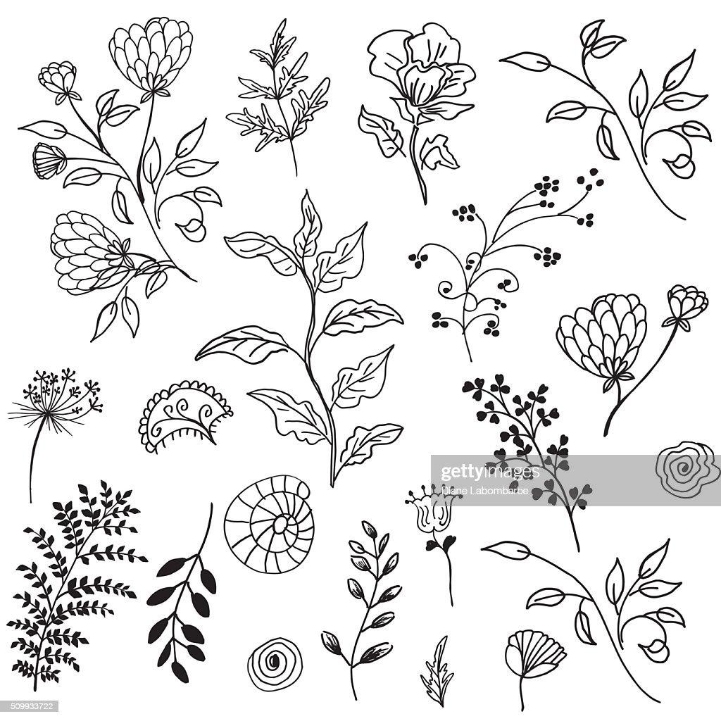 Retro Doodled decorative Plant Elements : stock illustration