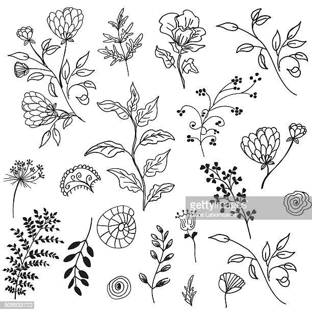 retro doodled decorative plant elements - pen and ink stock illustrations