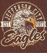 Retro Eagles Mascot Design