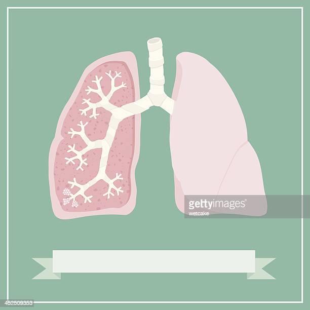 retro lungs diagram - medical diagram stock illustrations, clip art, cartoons, & icons