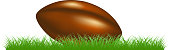 Retro rugby ball lying in grass