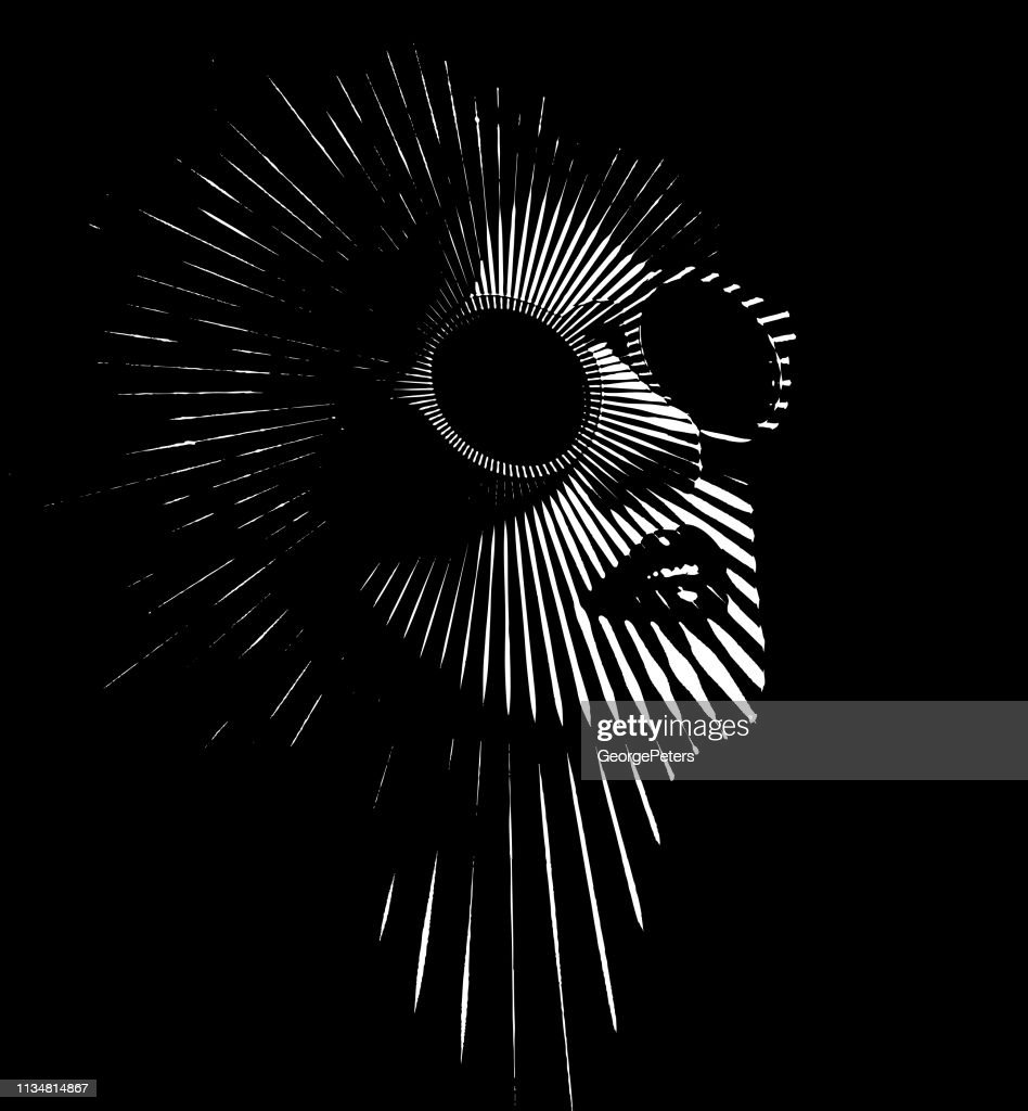 Retro woman's face with vector sunbeams : stock illustration